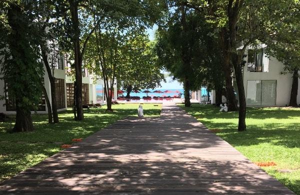 ザ・ライブラリー・コーサムイ全体風景